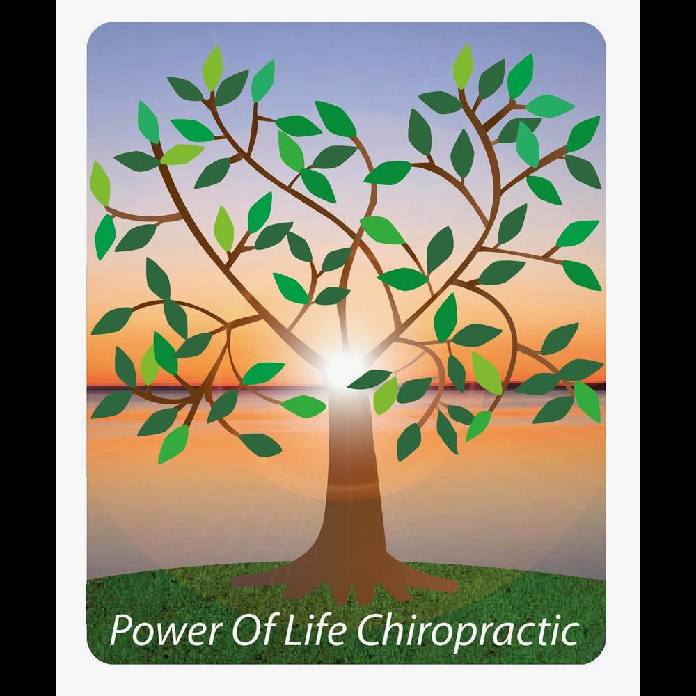 Power of Life Chiropractic